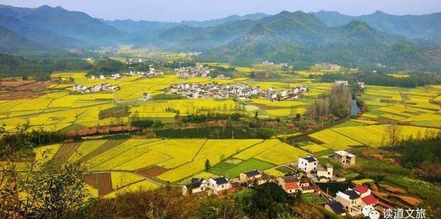 这九大乡村产业将迎来发展机遇?