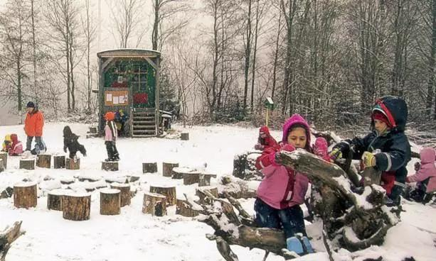 森林教育,原来是面向未来的教育