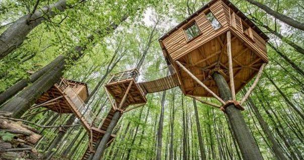 精品案例:分享两个亲子乐园景区设计方案