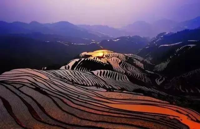 农业农村部公布2020年优势特色产业集群建设名单,湖北三峡蜜橘与小龙虾产业在列