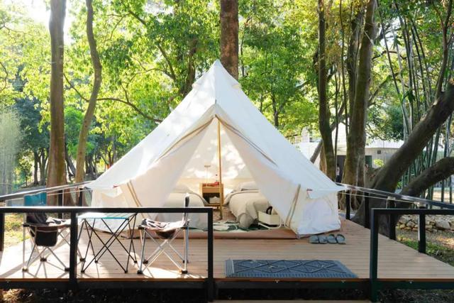 今年最火旅行方式!扎进森林、星空露营,烧烤音乐…我爱了