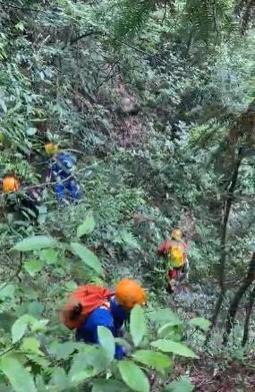 美女翼装飞行员搜寻经过曝光,当地村民最先找到,遗体完整,先撞到了树尖