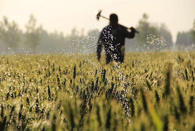 农民工外出务工找工作难,在农村创业咋贷款?方法要记好