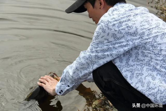 长江病了!起底长江流域电鱼黑色产业链,危害极大
