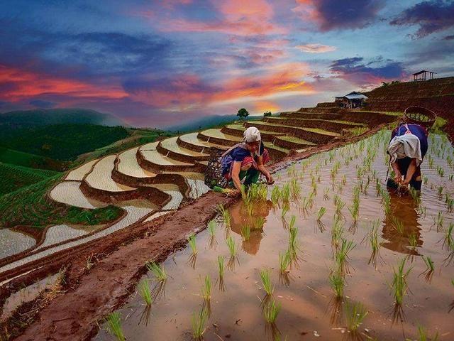 云南红河州:美丽乡村建设中存在哪些问题?怎样针对性解决?