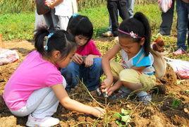 """农庄的标配——亲子项目,可为农庄创造""""五大价值""""!(庄主宝典)"""