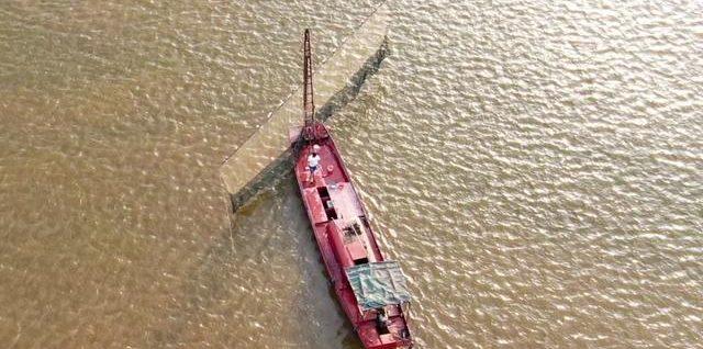 起底长江流域电鱼黑色产业链