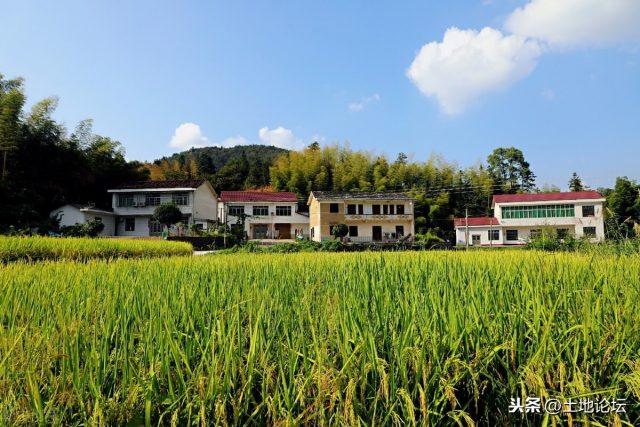 农业农村部:到了工业反哺农业、城市支持农村的发展阶段