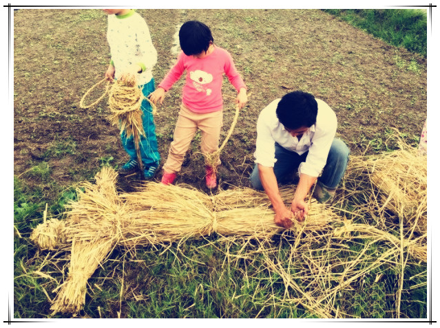 研学:和稻草做朋友去旅行,看看我们的稻草朋友都去了哪?